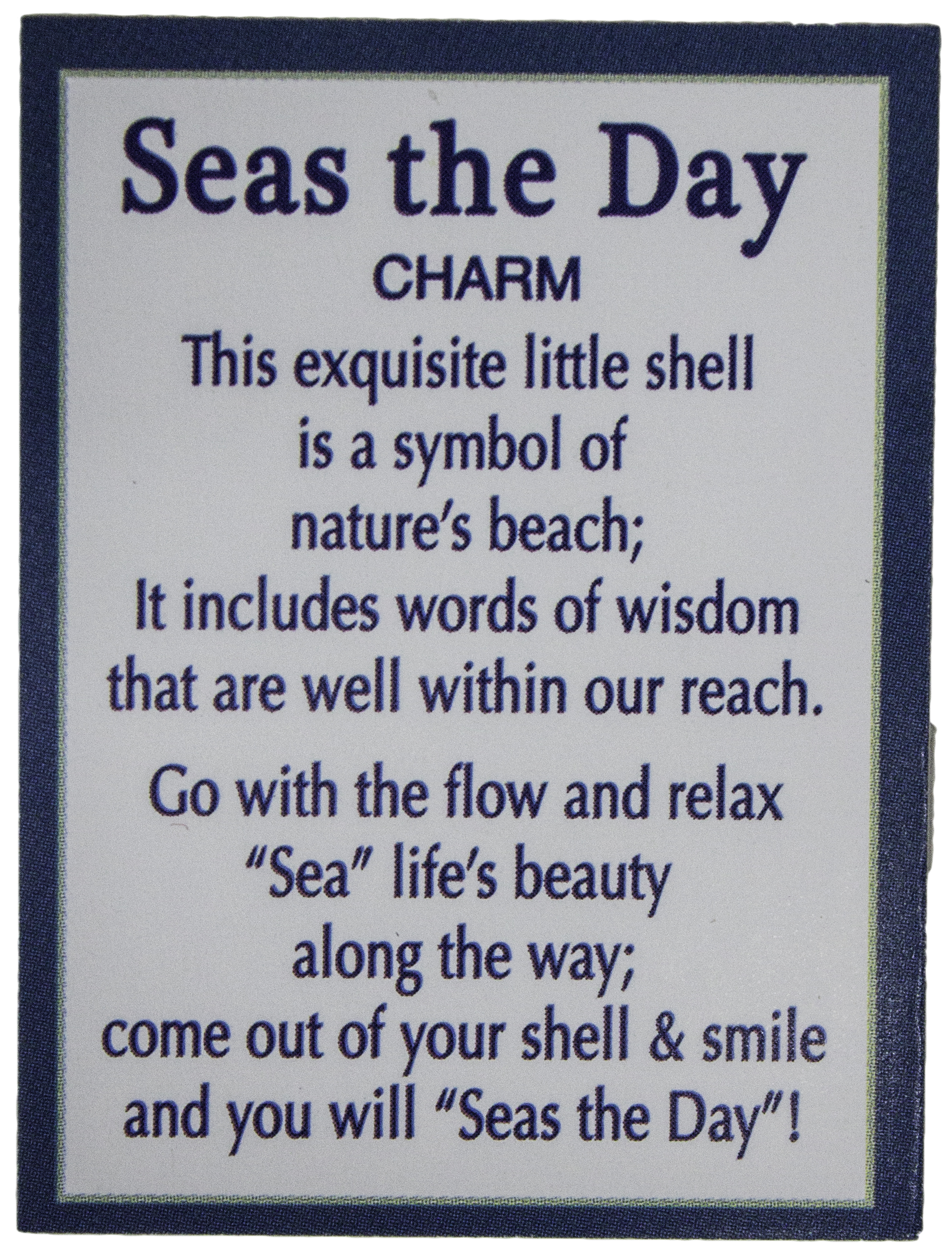 Inspirational Message Of The Day Ganz Seas The Day Shell Inspirational Message Pocket Charm With